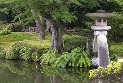 ishikawa011